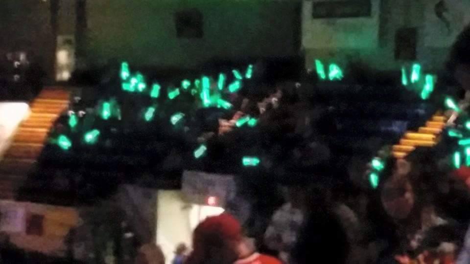 Green Glow Sticks 2015